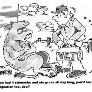 Farm Agriculture Cartoon 213 a Cartoon Image and funny joke for license by Dan Rosandich