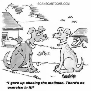 Pet Animal Cartoon 71 a Cartoon Image and funny joke for license by Dan Rosandich